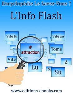 Flashinfoattractiontome2